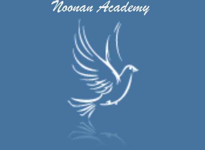 noonan academy
